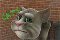 Vorbind cu Tom Cat