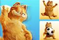 Garfield Memory
