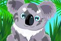 Ingrijeste Ursuletii Koala!