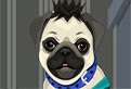 My Pug Pet Care and Dressup