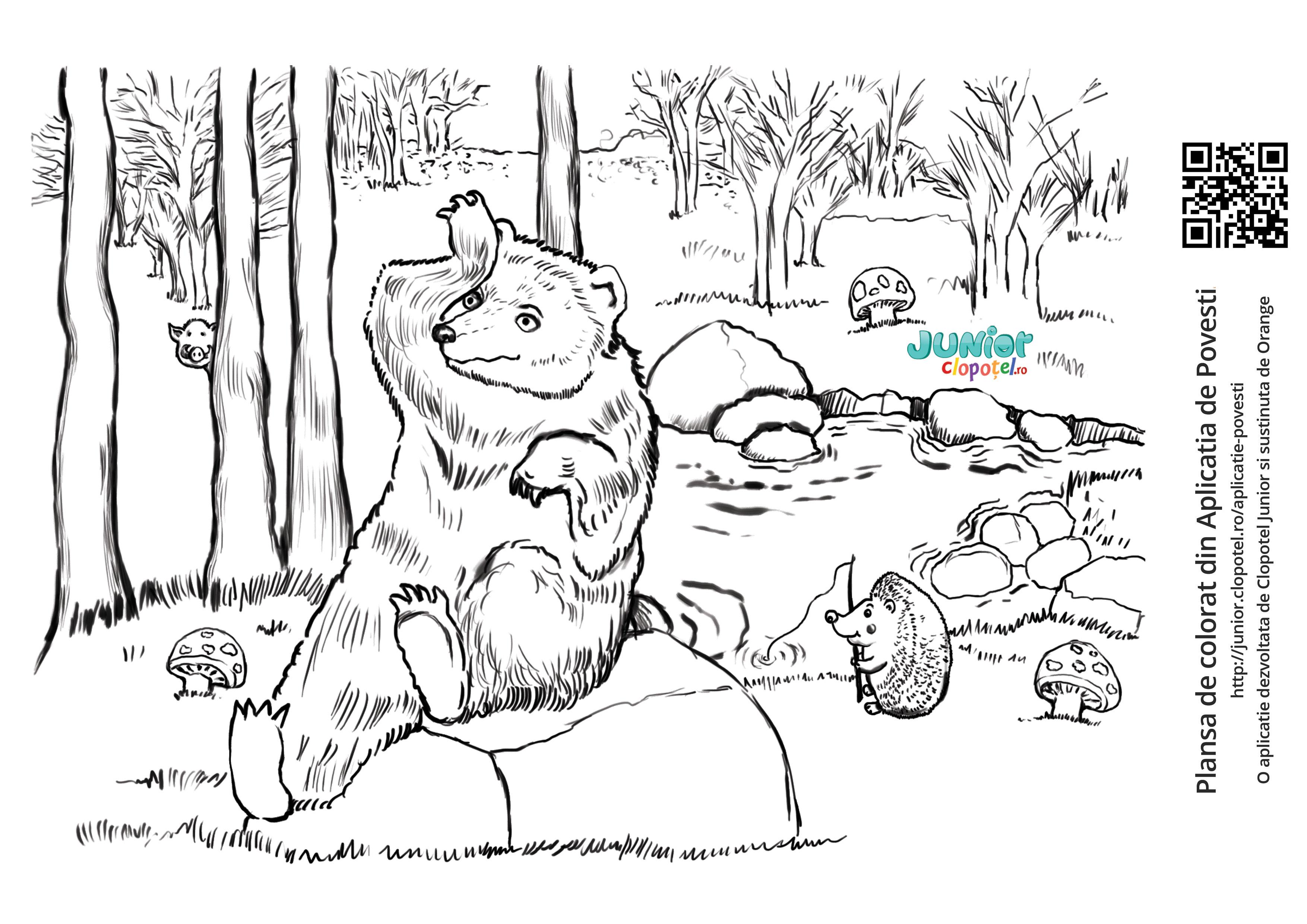 Cum isi pierde ursul coada