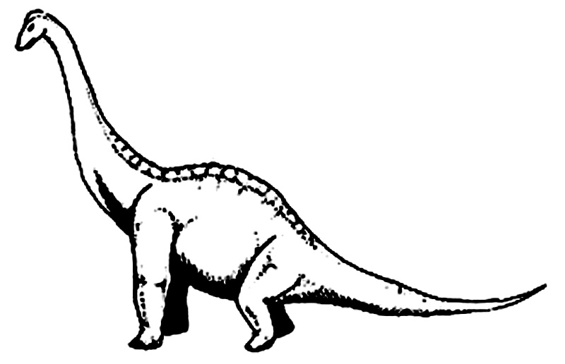 Brachiosaurus de colorat