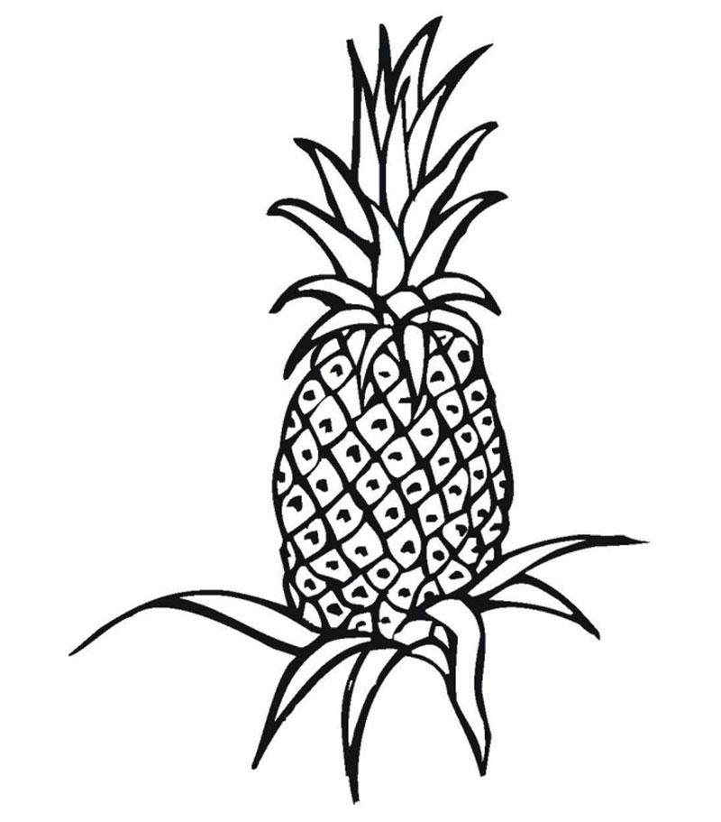 Ananas de colorat