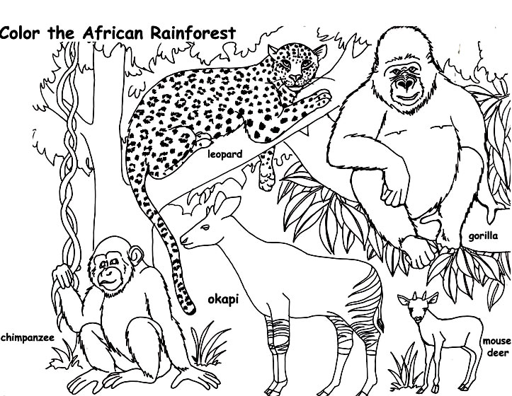 african animals coloring pages to print - plansa de colorat cu animalele din africa