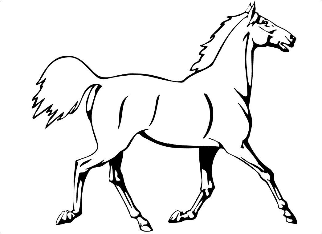 Calul Lui Fat Frumos