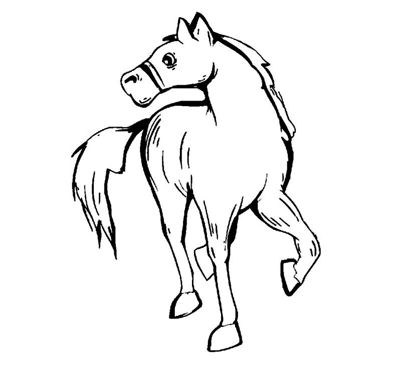 Coloreaza calul!