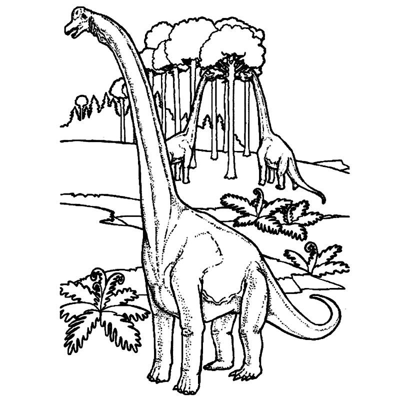 Coloreaza dinozaurul brachiosaurus!