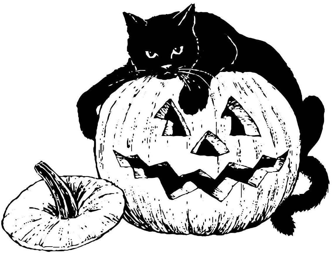 Pisica neagra pe dovleac