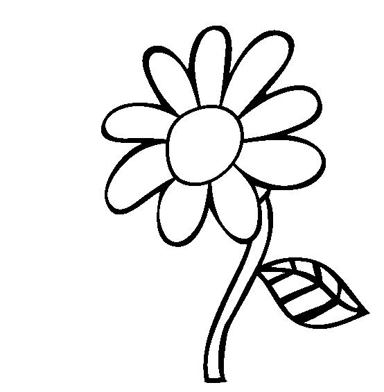 Plansa de colorat cu o floare de camp
