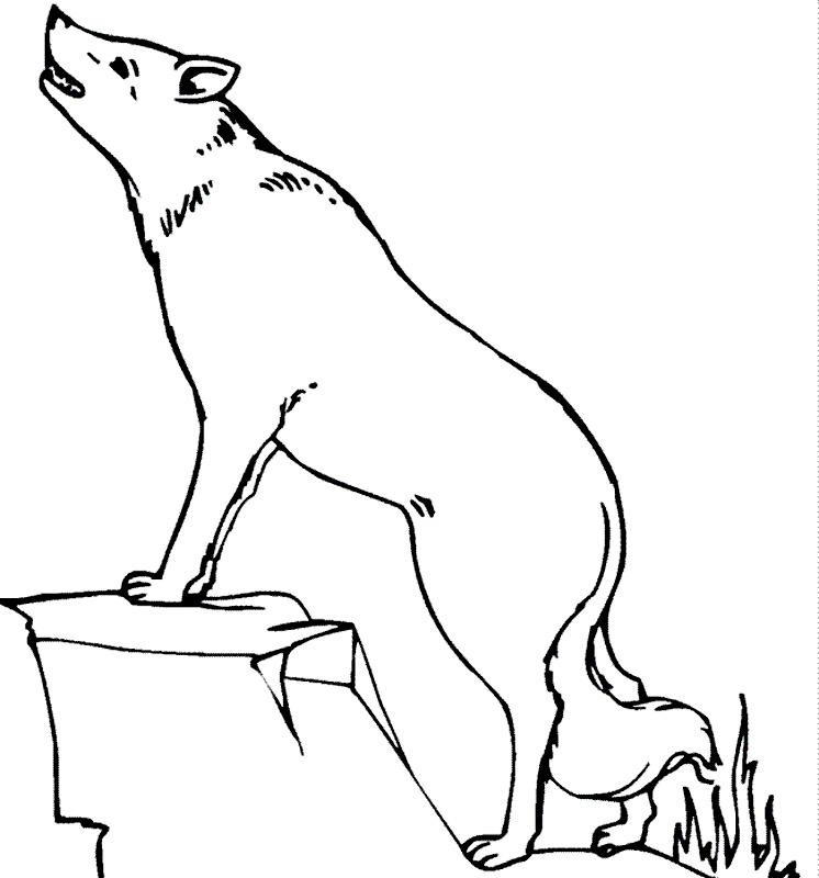 Desene animate cu Andersen Povestitorul - topdesene.com