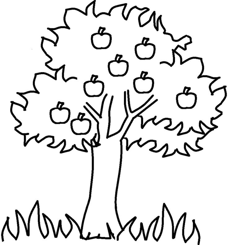 Merele din pom