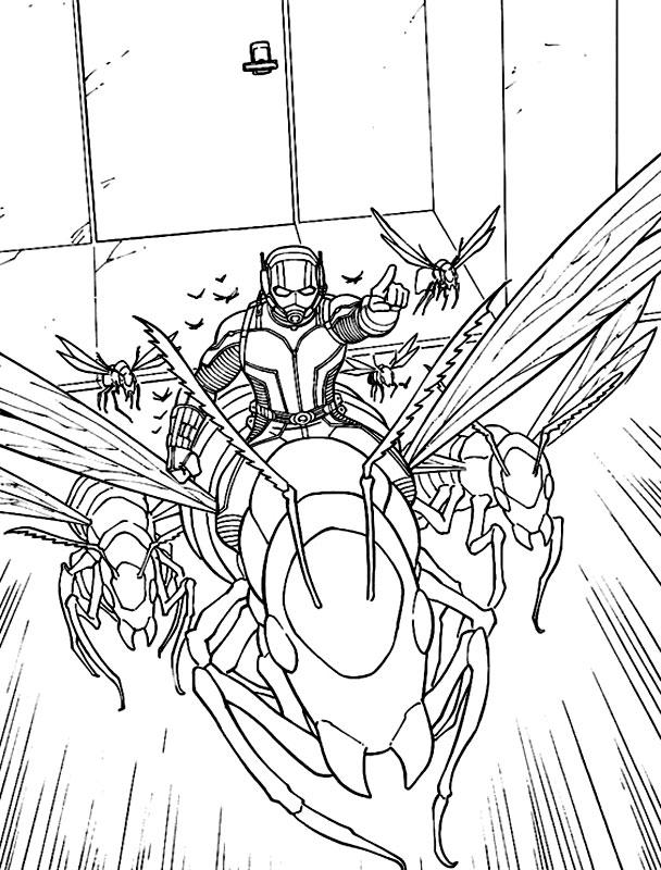 Omul-Furnica in actiune cu furnicile