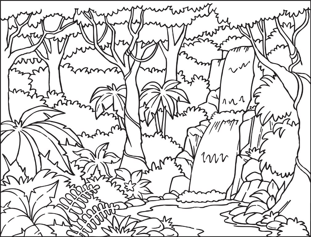 Padure de colorat for Temperate forest coloring pages