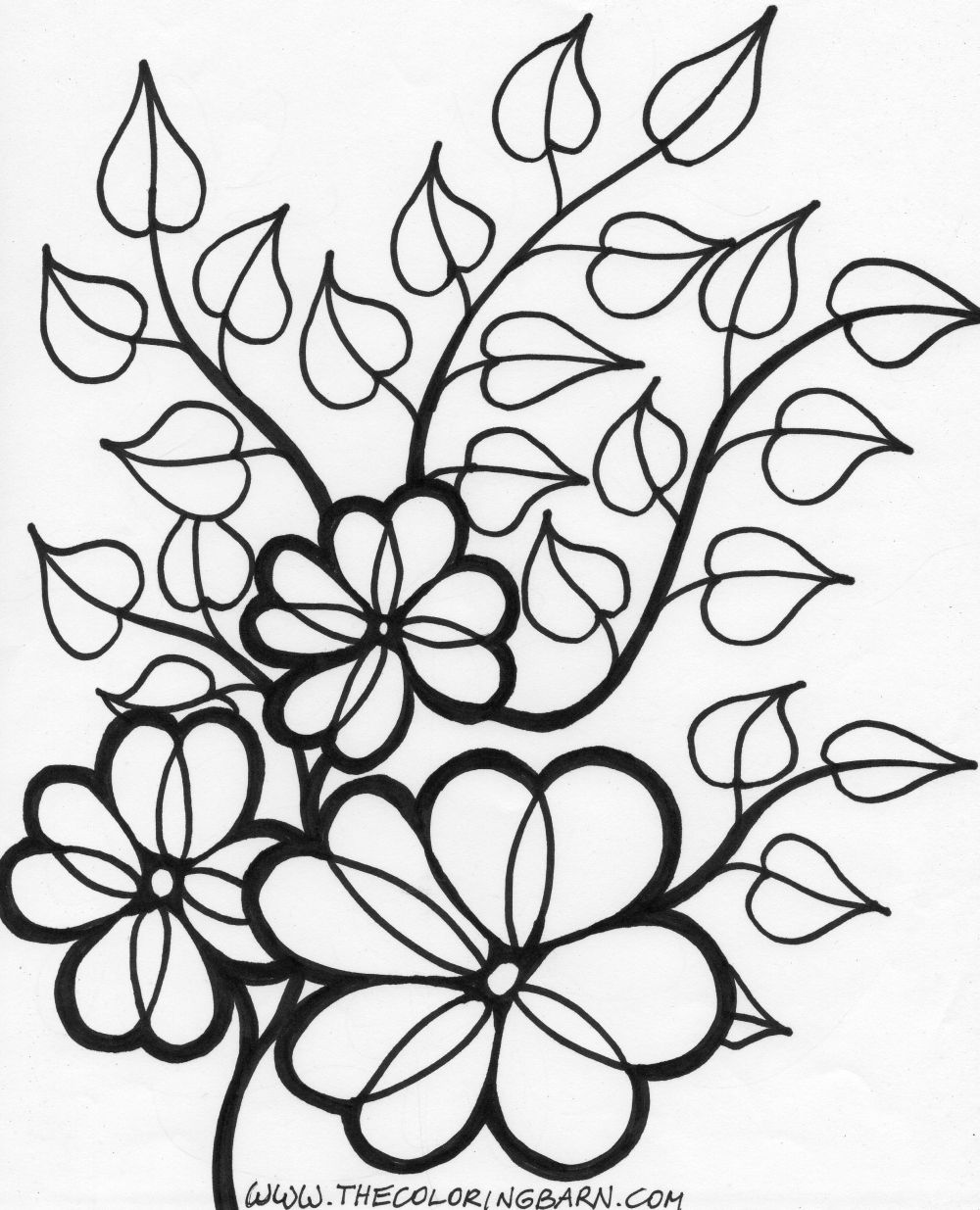 coloring pages vines images