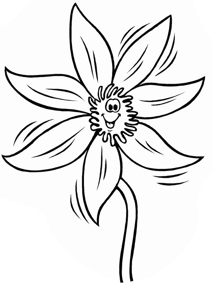 O narcisa zambitoare