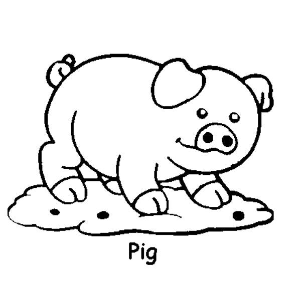 Plansa de colorat cu un porc