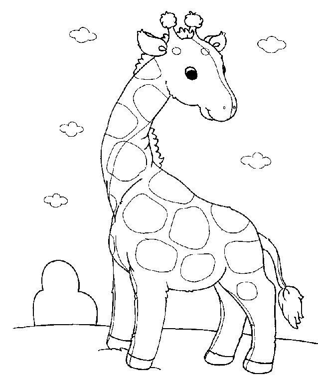 Pui De Girafa De Colorat
