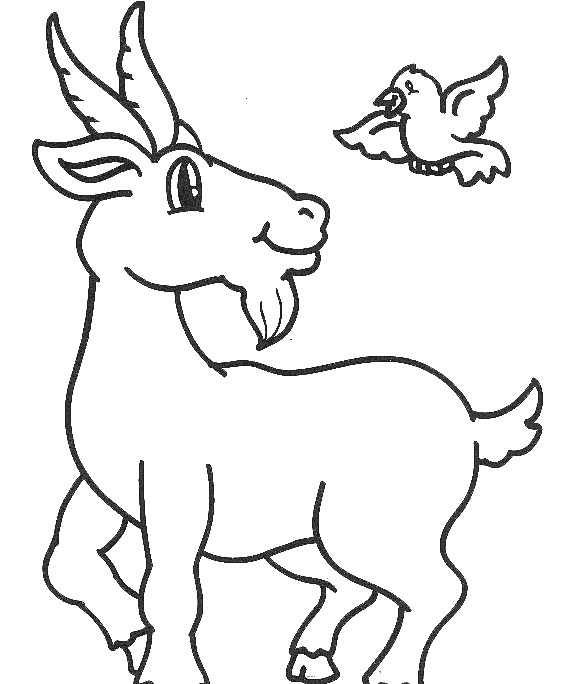 print coloring pages ku jayhawk - photo#15