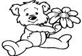 Floricica ursului de colorat