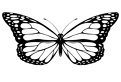 Un fluturas