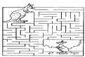 Cangurul in labirint de colorat