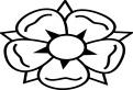 O floare deosebita