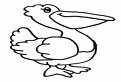 Plansa de colorat cu un pelican