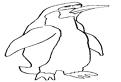 Plansa de colorat cu un pinguin
