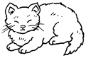 Pisicuta somnoroasa
