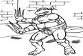 Raphael, testoasa ninja