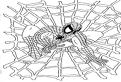 Spiderman de colorat