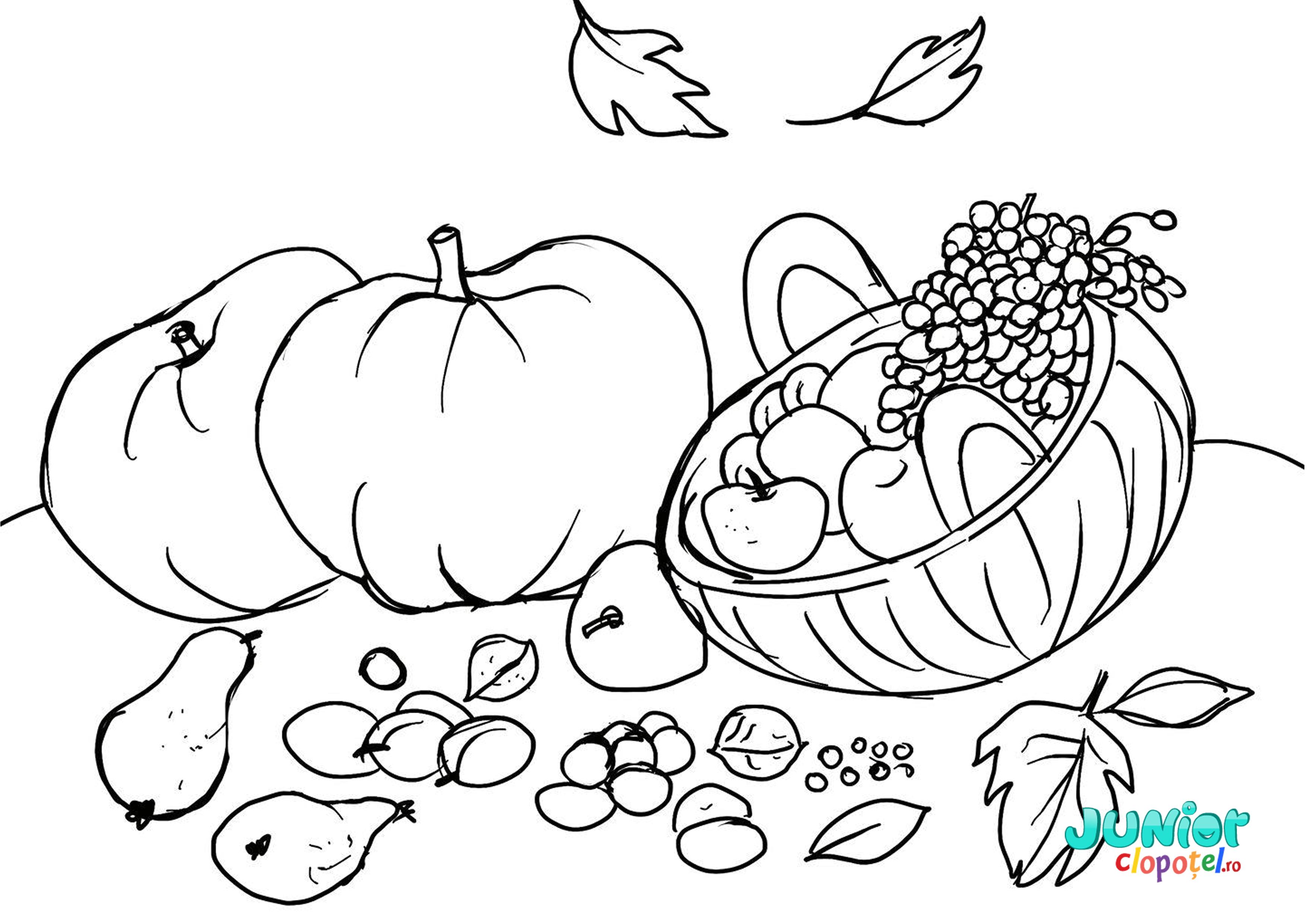 Bostani si multe fructe de toamna
