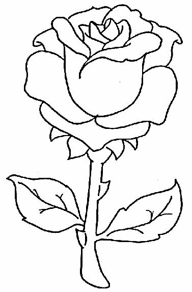 Plansa de colorat cu un trandafir