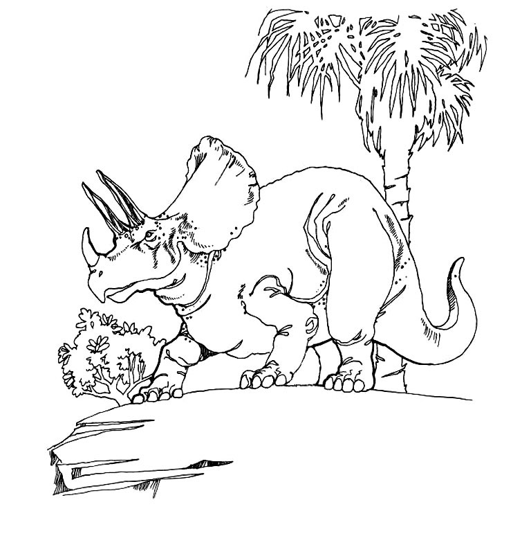 Un triceratops impunator