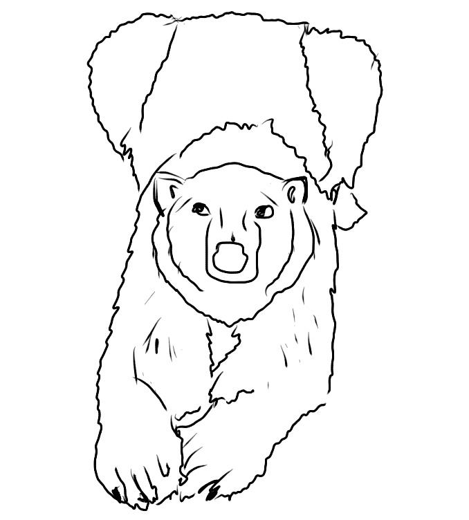 Plansa de colorat cu ursul polar