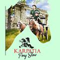 Ateliere pentru copii si aventura parc la Karpatia Pony Show 2017!