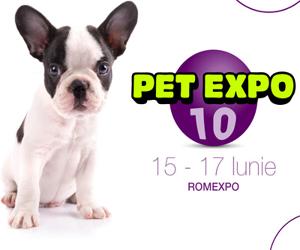 La aniversarea de 10 ani, PetExpo ofera distractie totala pentru familiile cu copii si animal de companie
