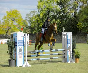 Spectacol ecvestru de top pentru 12.000 de spectatori la Karpatia Horse Show. Despre eleganta de a fi a pasionatilor de cai