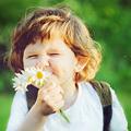 Rinita alergica te impiedica sa simti miros de primavara?