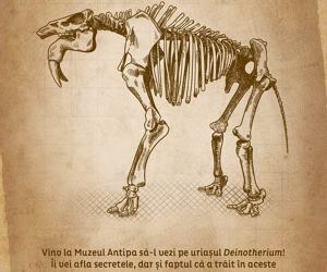 Vino la muzeu sa-l vezi pe uriasul Deinotherium!
