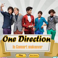 One Direction In Concert Makeover