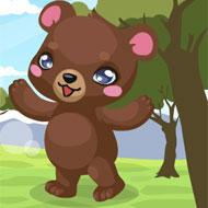 Bear Care
