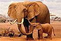 Elefantii din Puzzle