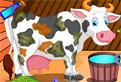 Ingrijeste Vacuta Holstein!