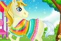 Pony Vet Doctor