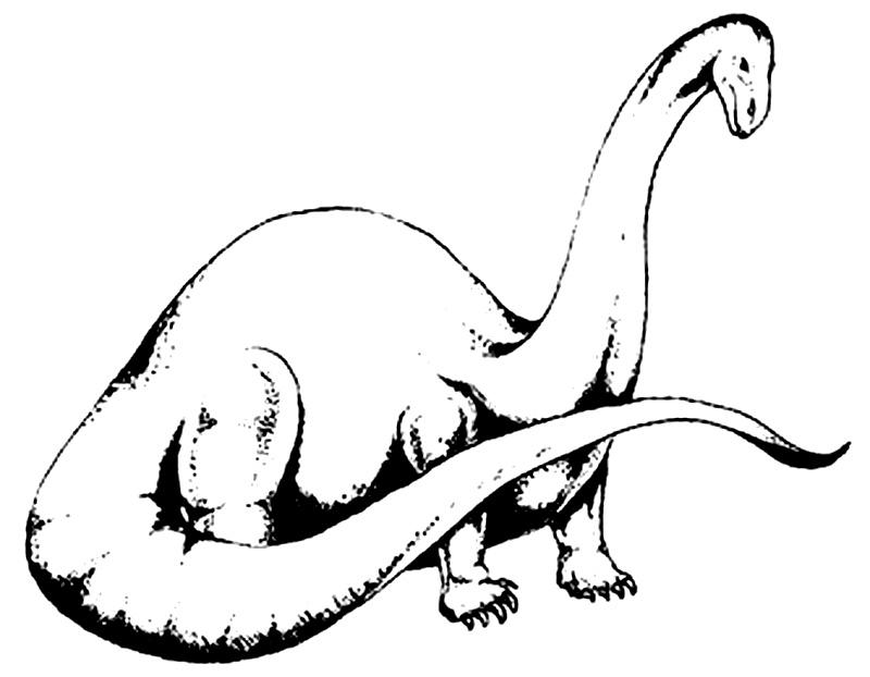 Apatosaurus de colorat