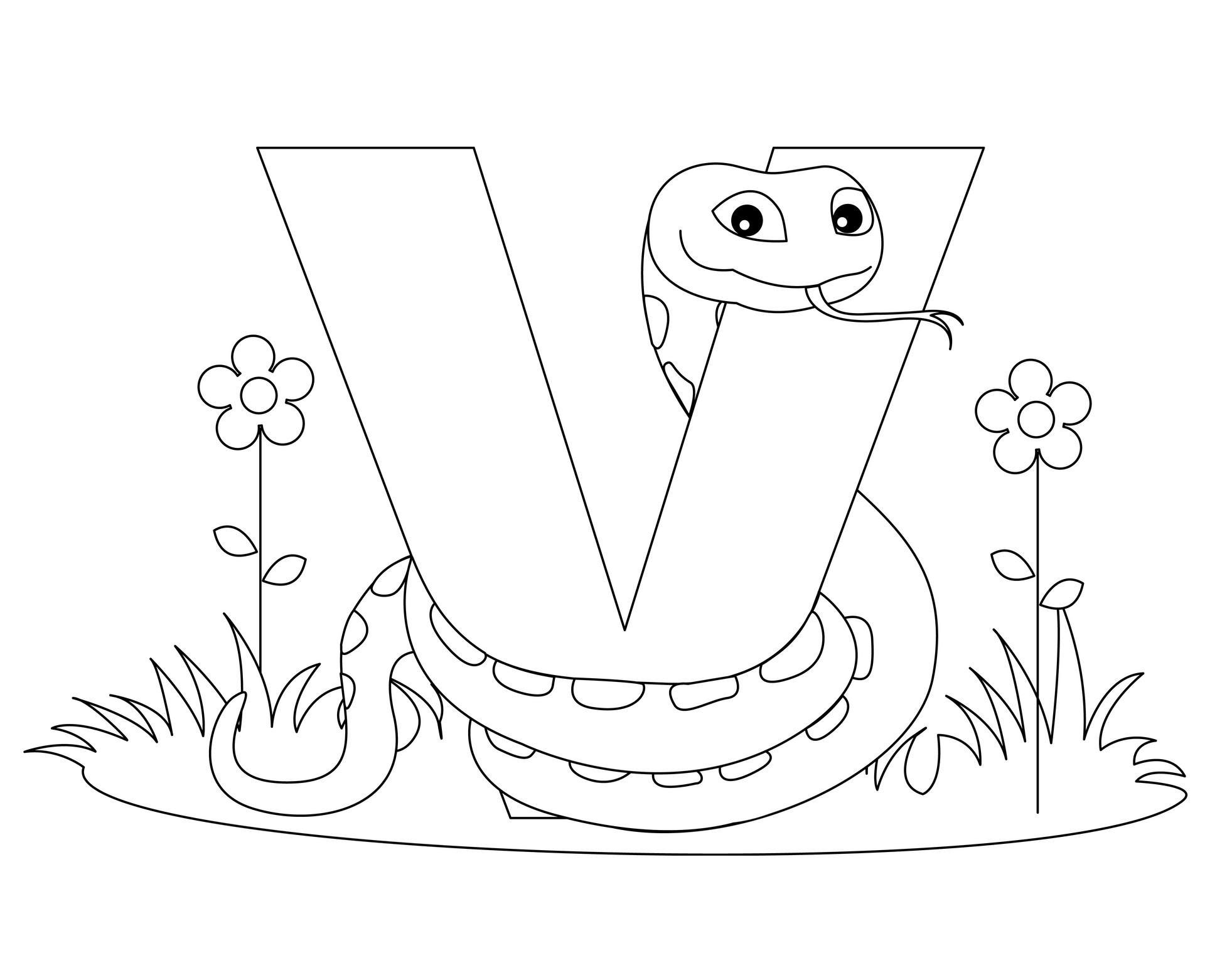 V din alfabet