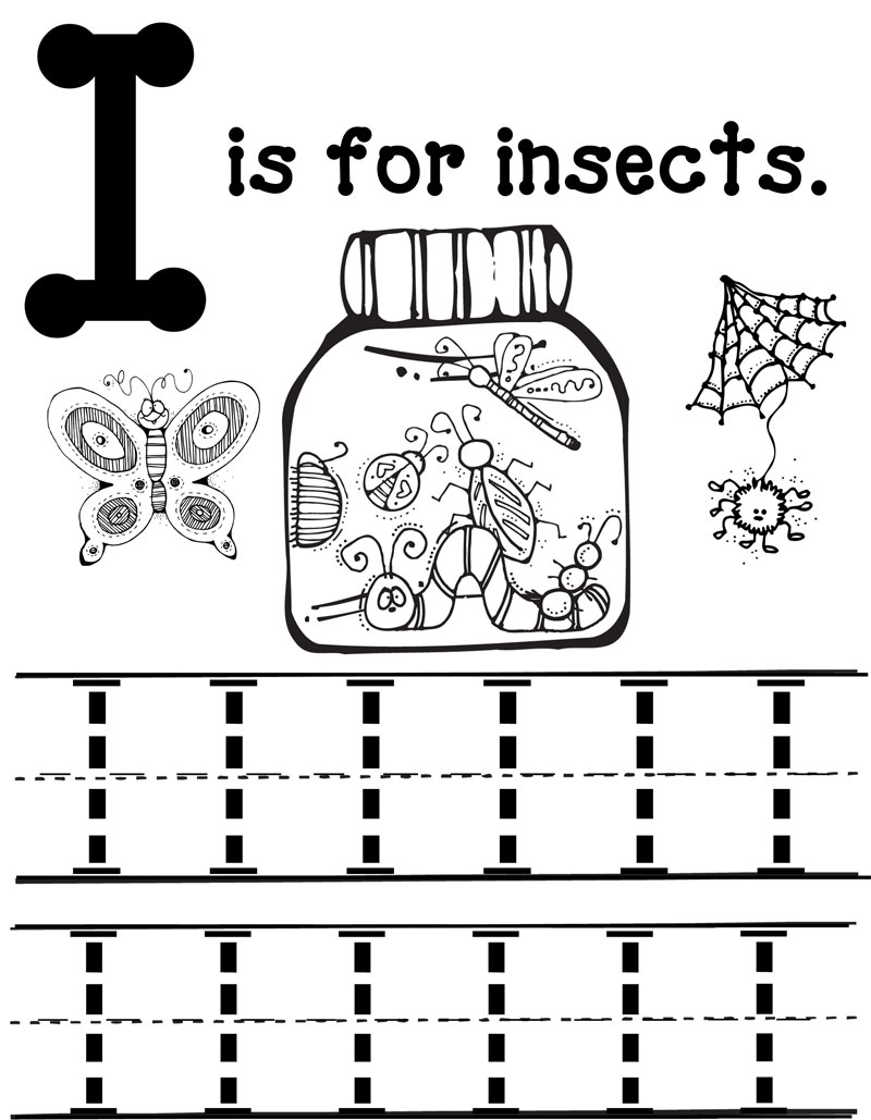 Litera i de la insecte