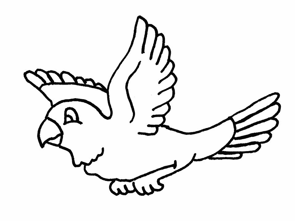 Plansa de colorat cu un papagal
