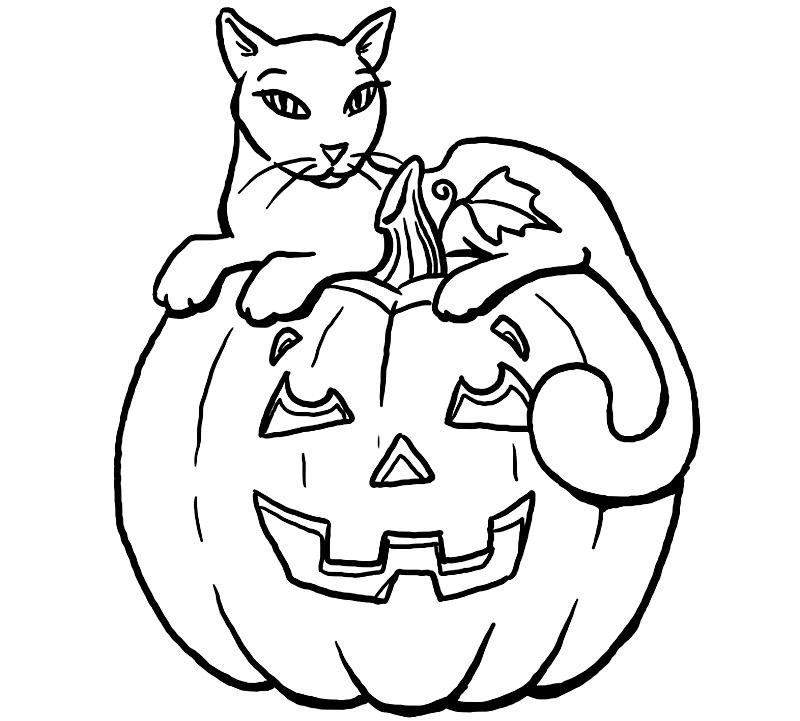 Pisica pe dovleacul de Halloween